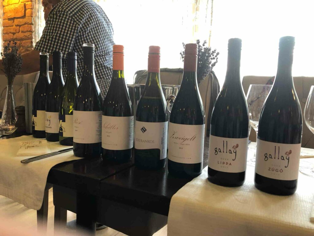 Bükk - a wine region to be discovered